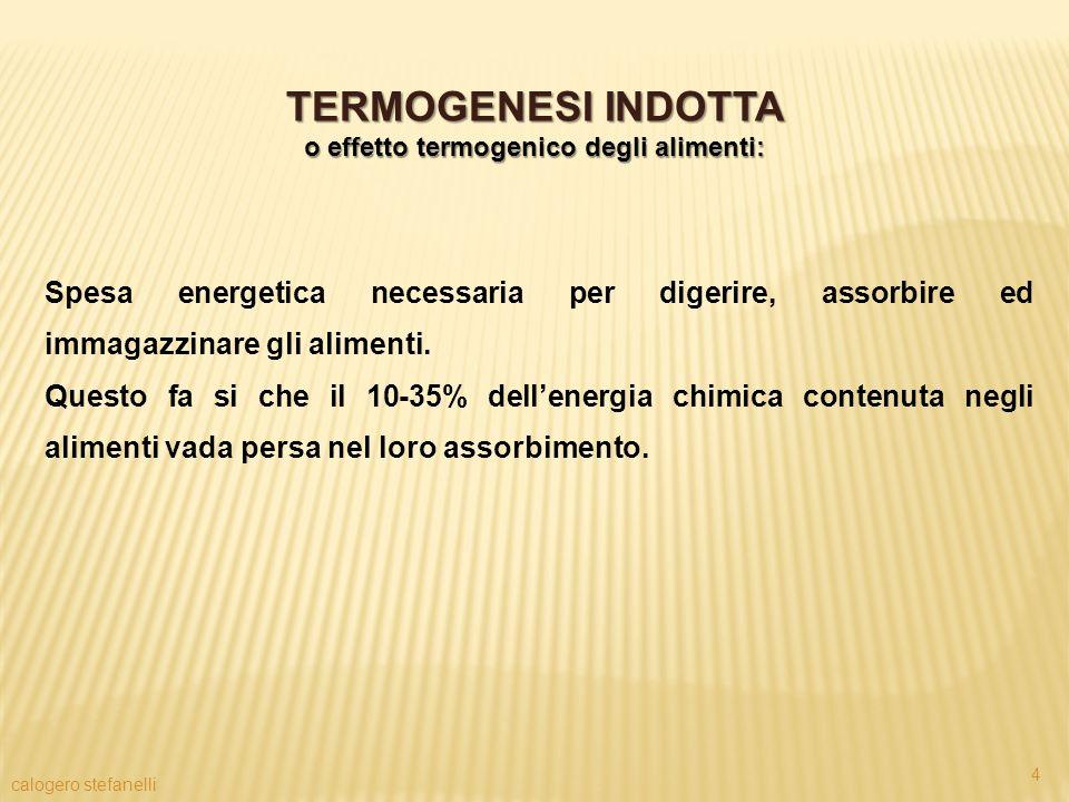 o effetto termogenico degli alimenti: