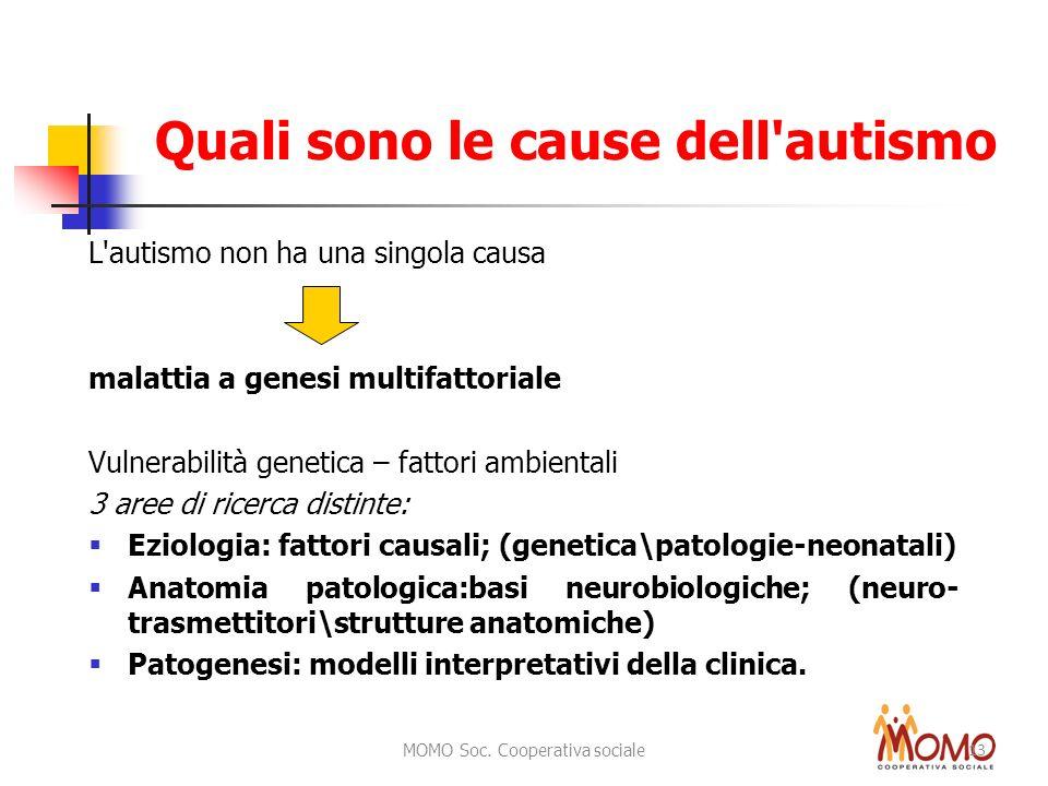 Quali sono le cause dell autismo