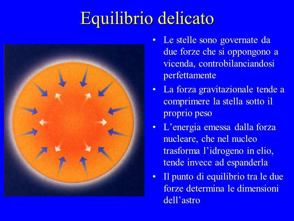 Equilibrio delicato Le stelle sono governate da due forze che si oppongono a vicenda, controbilanciandosi perfettamente.