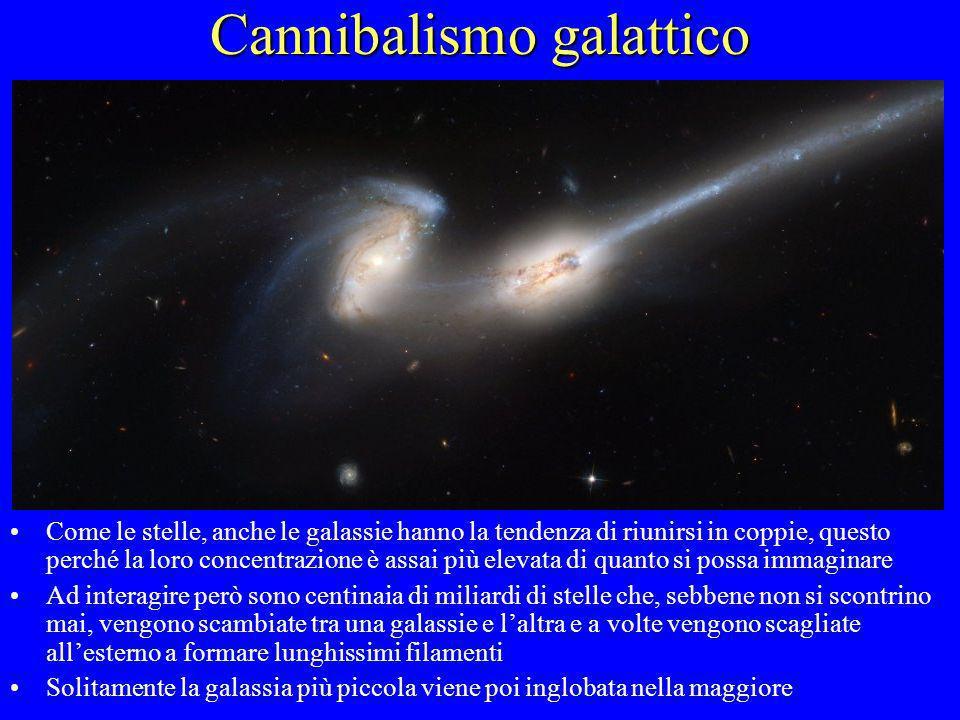 Cannibalismo galattico