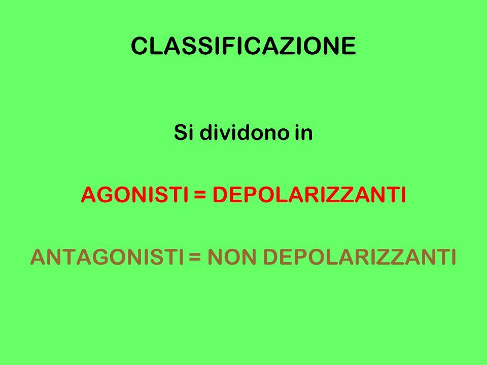 CLASSIFICAZIONE Si dividono in AGONISTI = DEPOLARIZZANTI