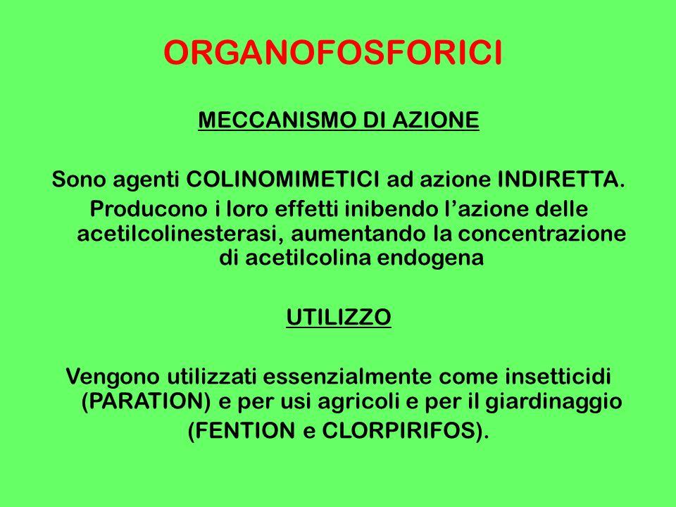 ORGANOFOSFORICI MECCANISMO DI AZIONE
