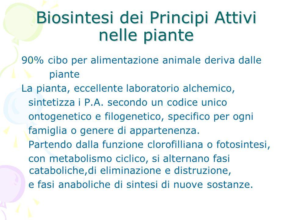 Biosintesi dei Principi Attivi nelle piante