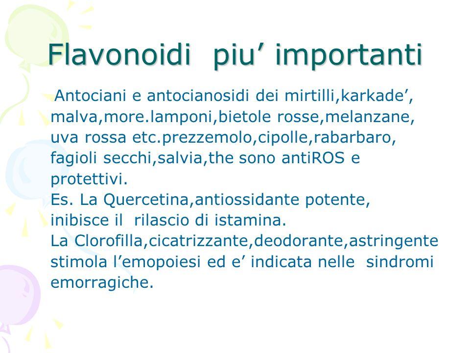 Flavonoidi piu' importanti