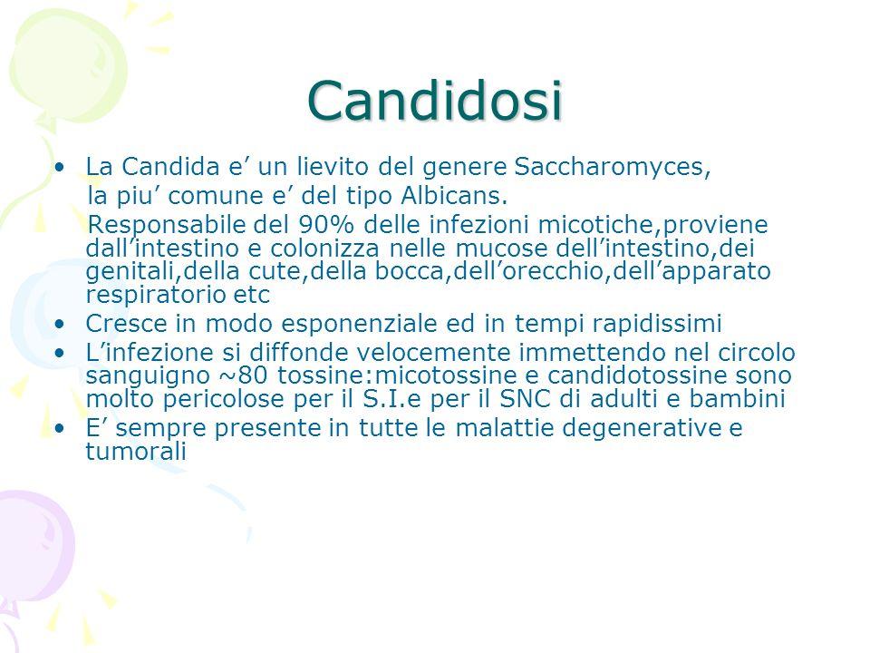 Candidosi La Candida e' un lievito del genere Saccharomyces,