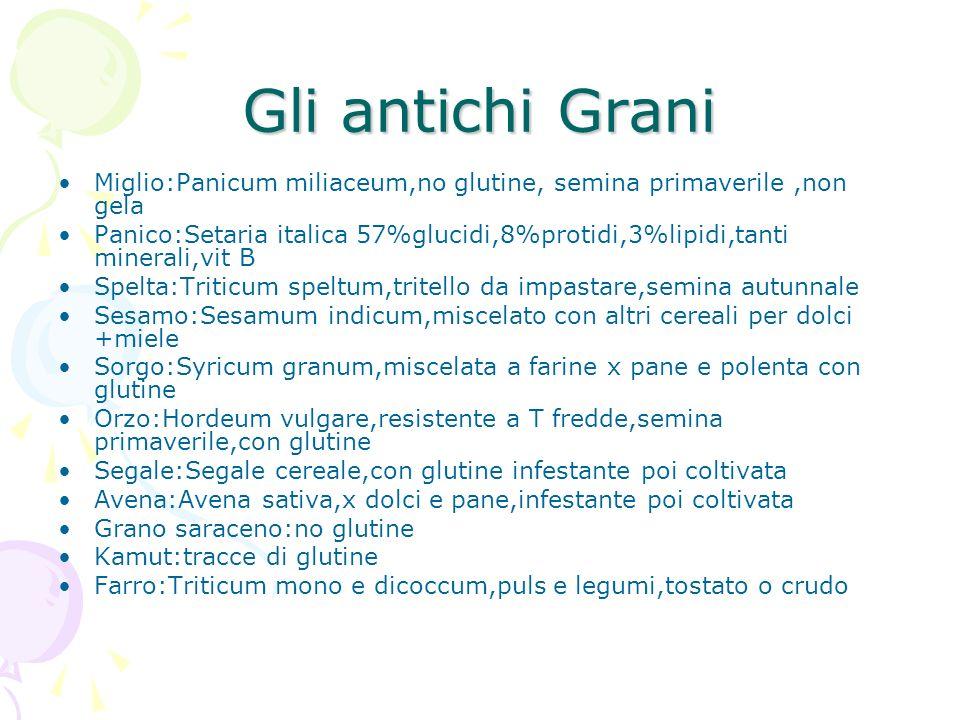 Gli antichi Grani Miglio:Panicum miliaceum,no glutine, semina primaverile ,non gela.