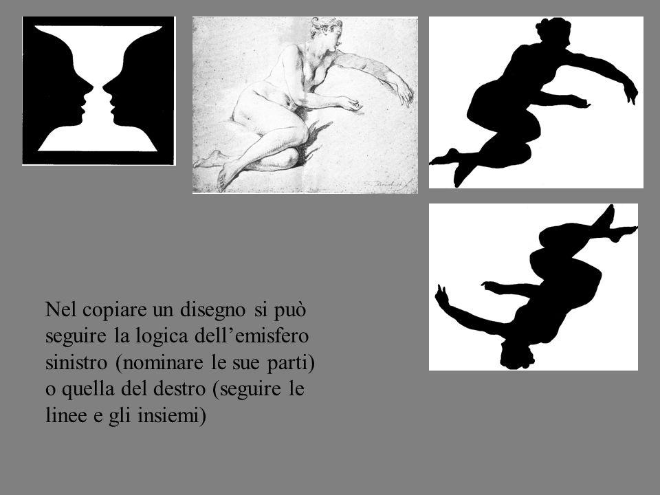 Nel copiare un disegno si può seguire la logica dell'emisfero sinistro (nominare le sue parti) o quella del destro (seguire le linee e gli insiemi)