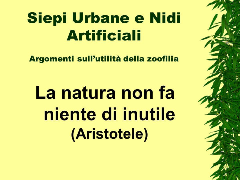 Siepi Urbane e Nidi Artificiali Argomenti sull'utilità della zoofilia