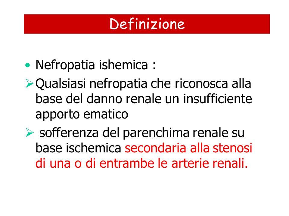 Definizione Nefropatia ishemica :