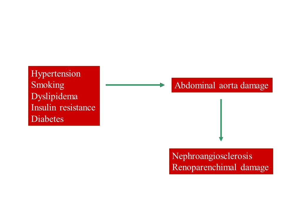 Hypertension Smoking. Dyslipidema. Insulin resistance. Diabetes. Hypertension. Smoking. Dyslipidema.
