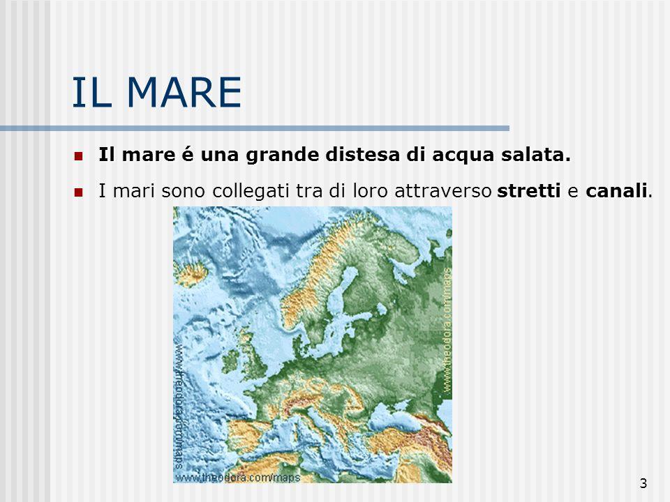 IL MARE Il mare é una grande distesa di acqua salata.