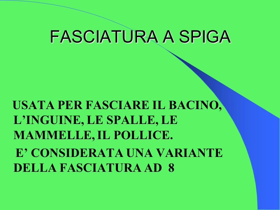 FASCIATURA A SPIGA USATA PER FASCIARE IL BACINO, L'INGUINE, LE SPALLE, LE MAMMELLE, IL POLLICE.