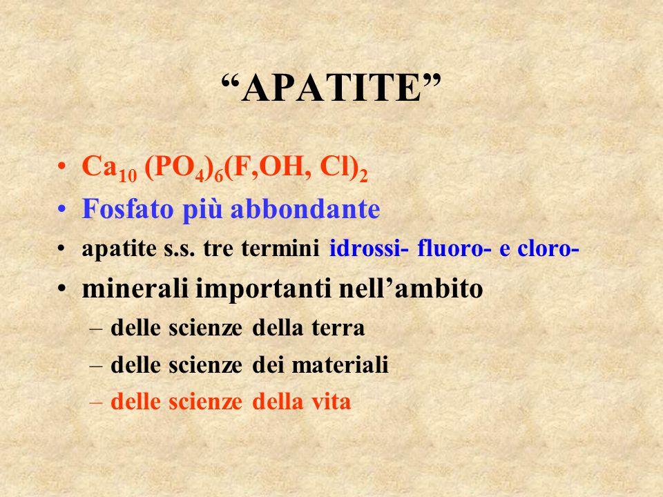 APATITE Ca10 (PO4)6(F,OH, Cl)2 Fosfato più abbondante