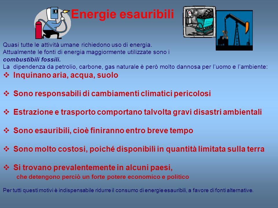 Energie esauribili Inquinano aria, acqua, suolo