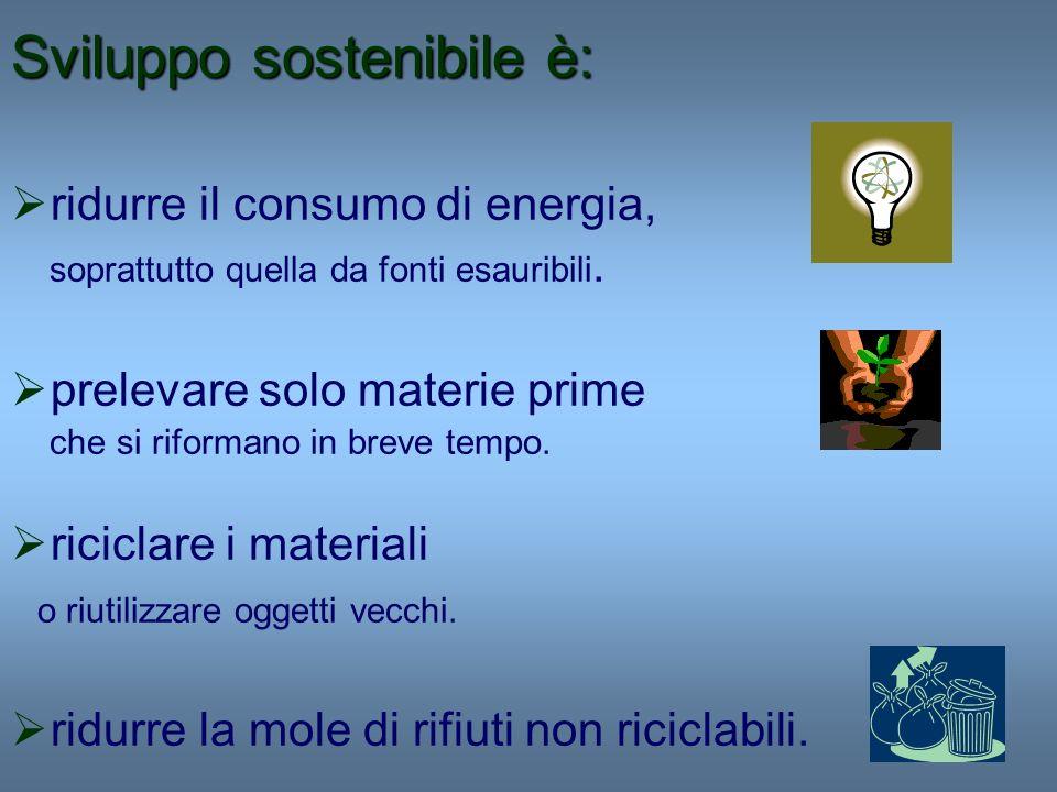 Sviluppo sostenibile è: