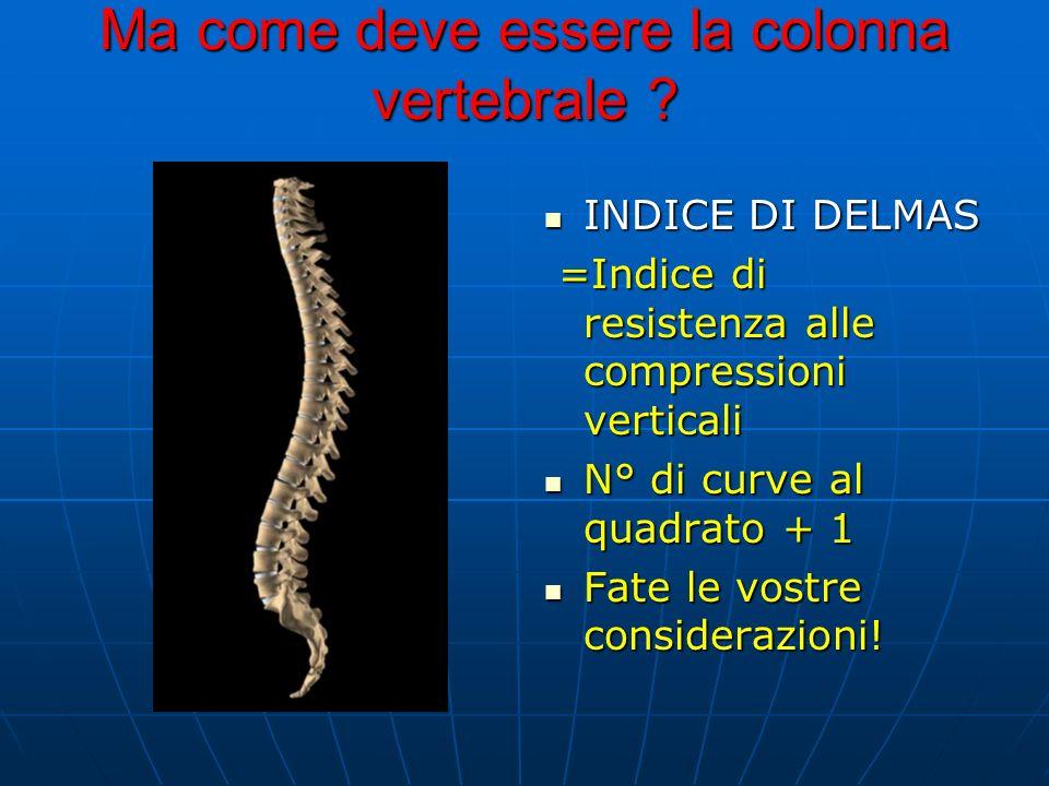 Ma come deve essere la colonna vertebrale