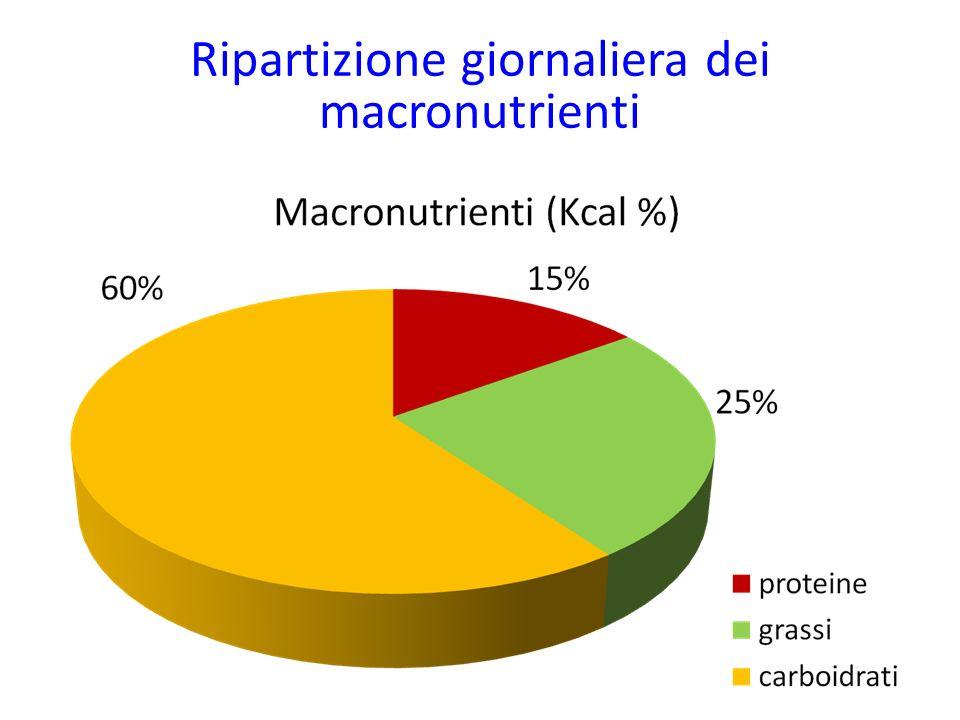 Ripartizione giornaliera dei macronutrienti