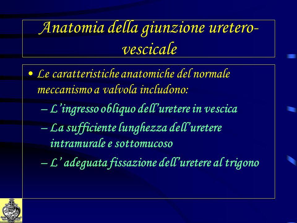 Anatomia della giunzione uretero-vescicale