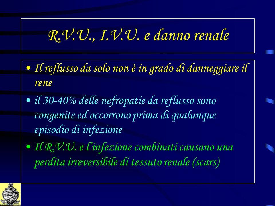 R.V.U., I.V.U. e danno renale Il reflusso da solo non è in grado di danneggiare il rene.