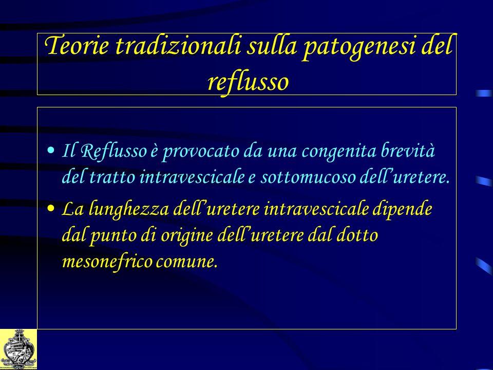 Teorie tradizionali sulla patogenesi del reflusso