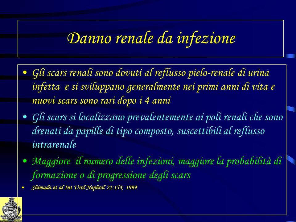 Danno renale da infezione