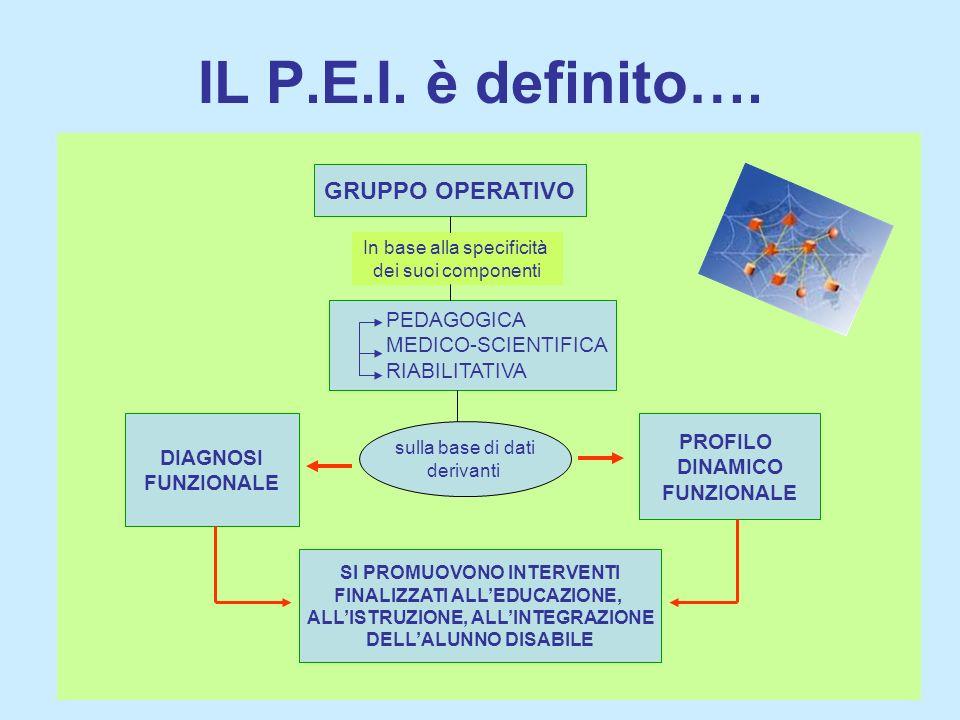 IL P.E.I. è definito…. GRUPPO OPERATIVO PEDAGOGICA MEDICO-SCIENTIFICA