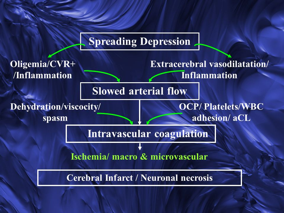Spreading Depression Slowed arterial flow