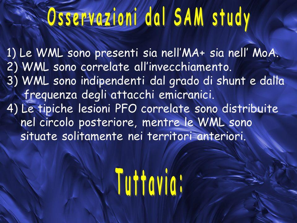 Osservazioni dal SAM study