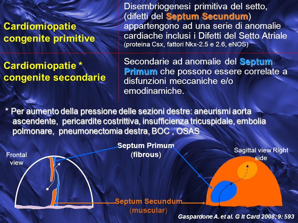 Gaspardone A. et al. G It Card 2008; 9: 593