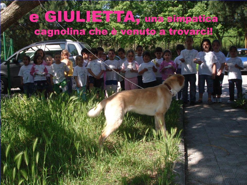 GIULIETTA, IL CANE IN FUGA DELLA MAESTRA