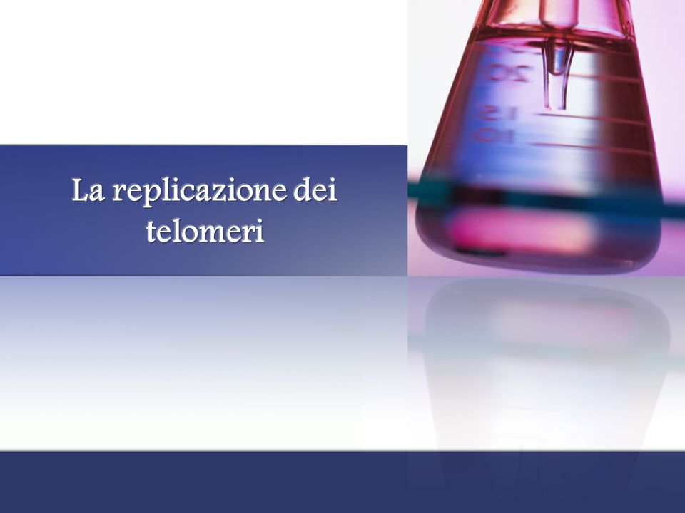 La replicazione dei telomeri