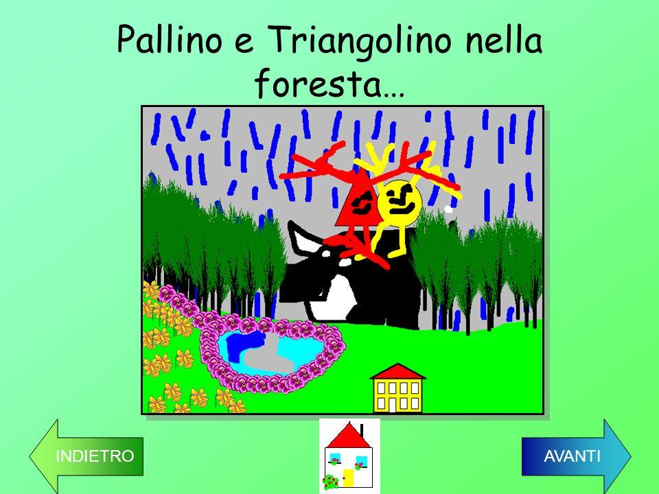 Pallino e Triangolino nella foresta…