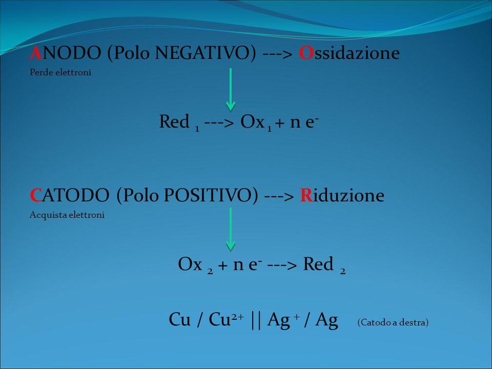 ANODO (Polo NEGATIVO) ---> Ossidazione