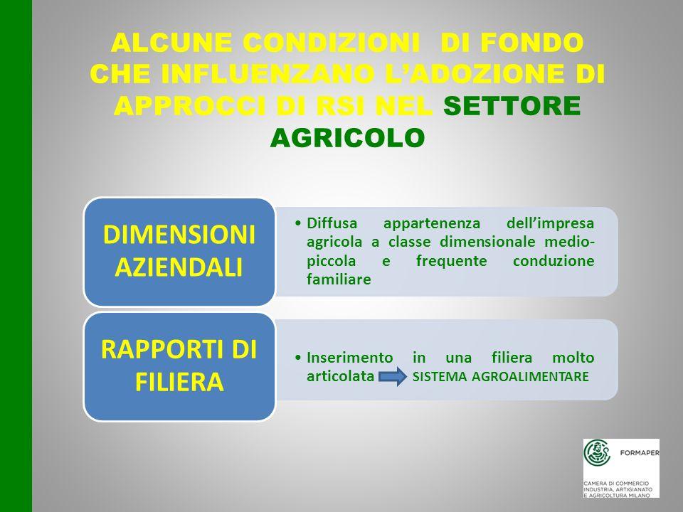 ALCUNE CONDIZIONI DI FONDO che influenzano l'adozione di approcci di RSI nel settore agricolo