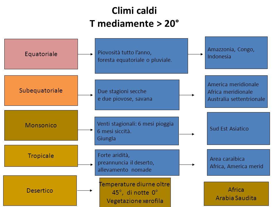Climi caldi T mediamente > 20°