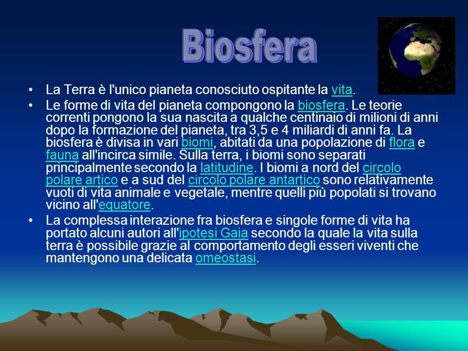 Biosfera La Terra è l unico pianeta conosciuto ospitante la vita.