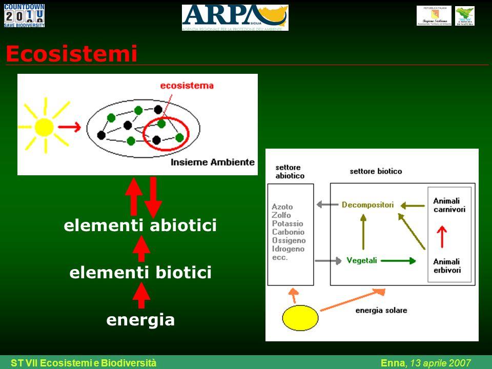 Ecosistemi elementi abiotici elementi biotici energia