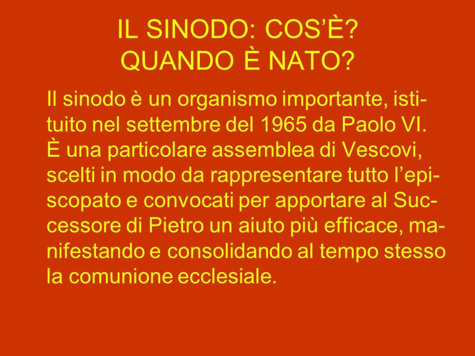 IL SINODO: COS'È QUANDO È NATO