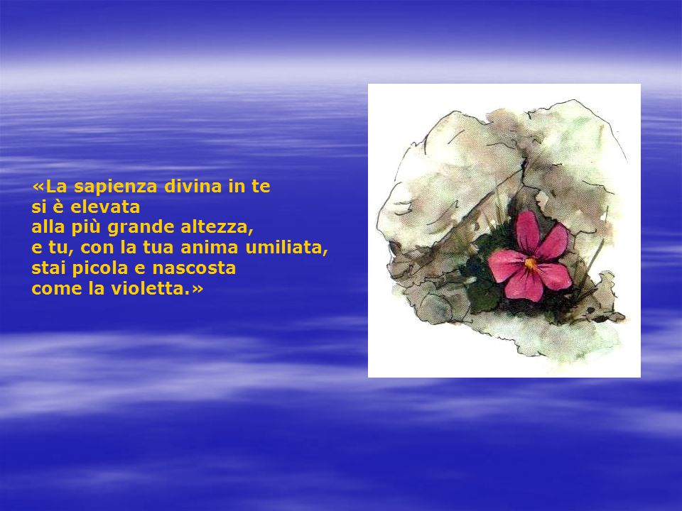 «La sapienza divina in te