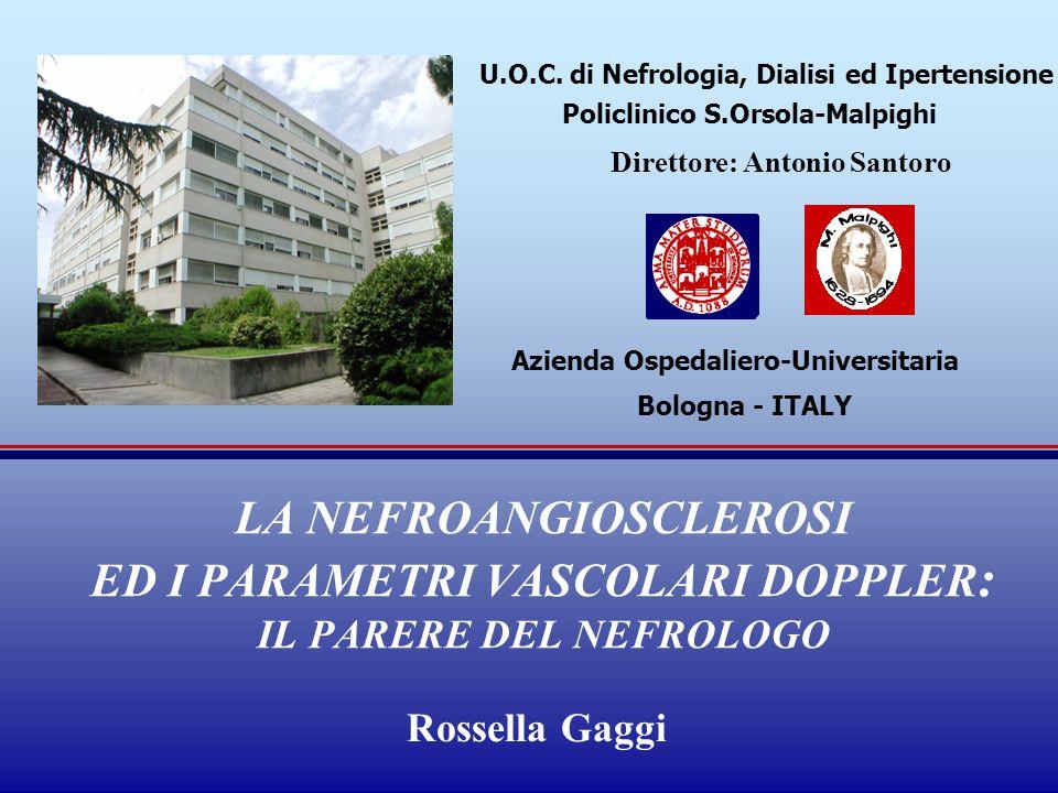 U.O.C. di Nefrologia, Dialisi ed Ipertensione