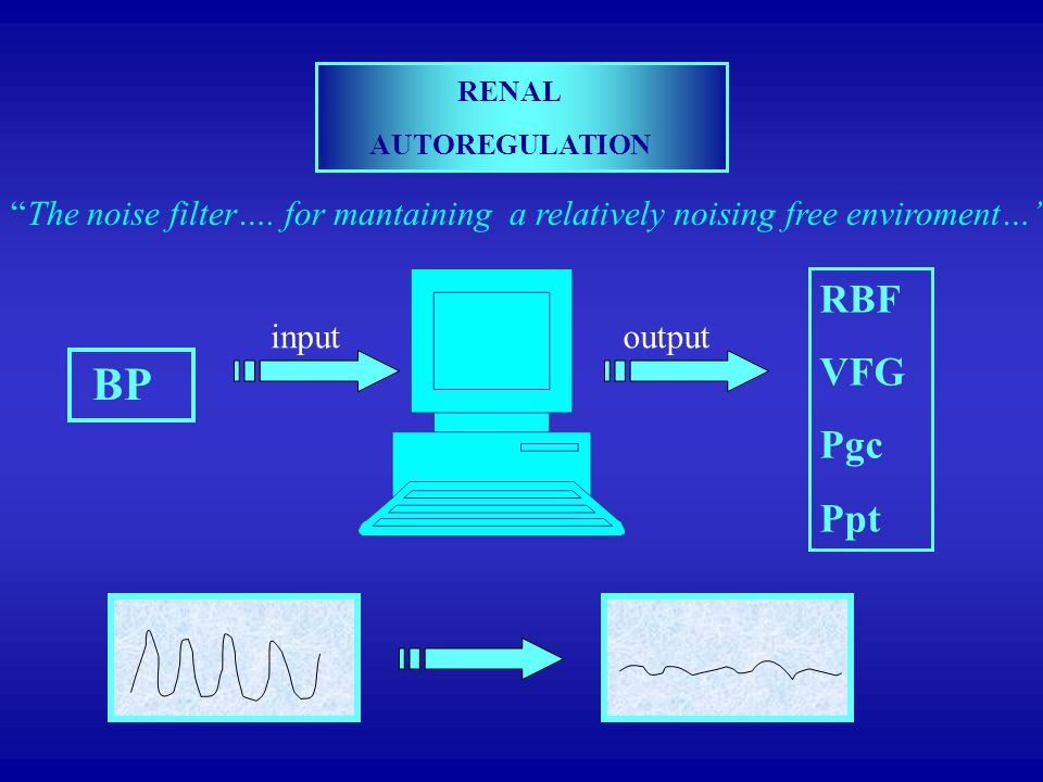 RENAL AUTOREGULATION. The noise filter…. for mantaining a relatively noising free enviroment… RBF.