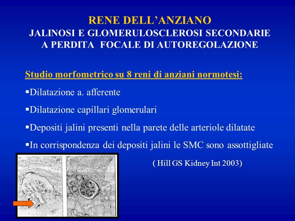 RENE DELL'ANZIANO JALINOSI E GLOMERULOSCLEROSI SECONDARIE A PERDITA FOCALE DI AUTOREGOLAZIONE