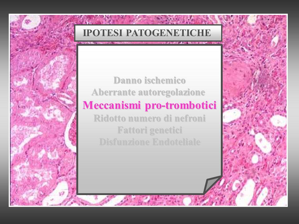 Meccanismi pro-trombotici