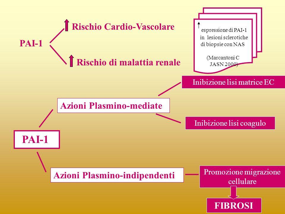 Rischio Cardio-Vascolare