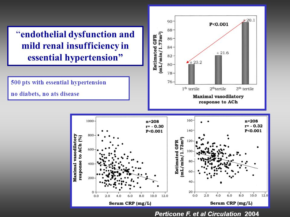 endothelial dysfunction and mild renal insufficiency in essential hypertension