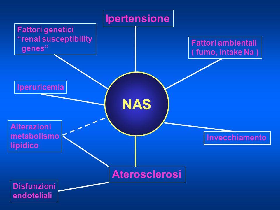 NAS Ipertensione Aterosclerosi Fattori genetici renal susceptibility