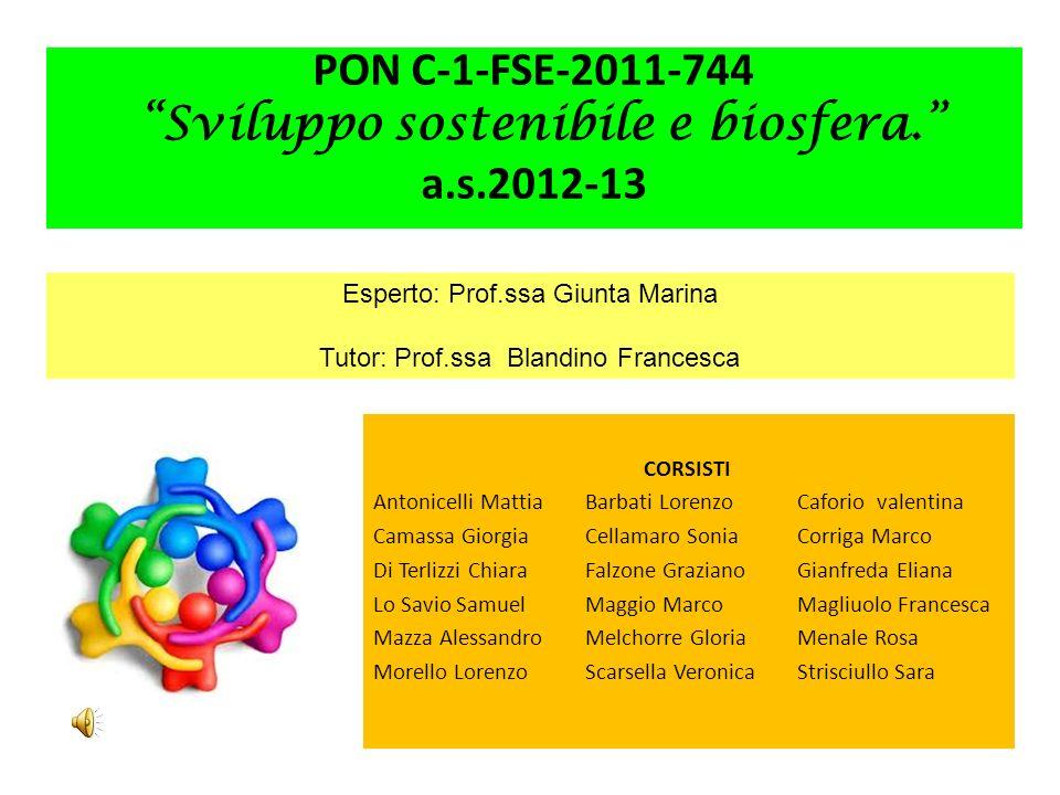 PON C-1-FSE-2011-744 Sviluppo sostenibile e biosfera. a.s.2012-13