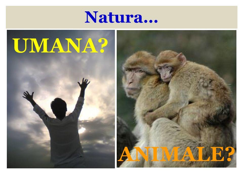 Natura… UMANA ANIMALE