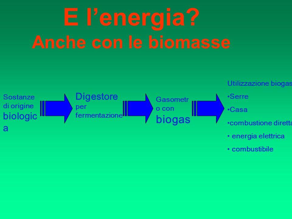 E l'energia Anche con le biomasse