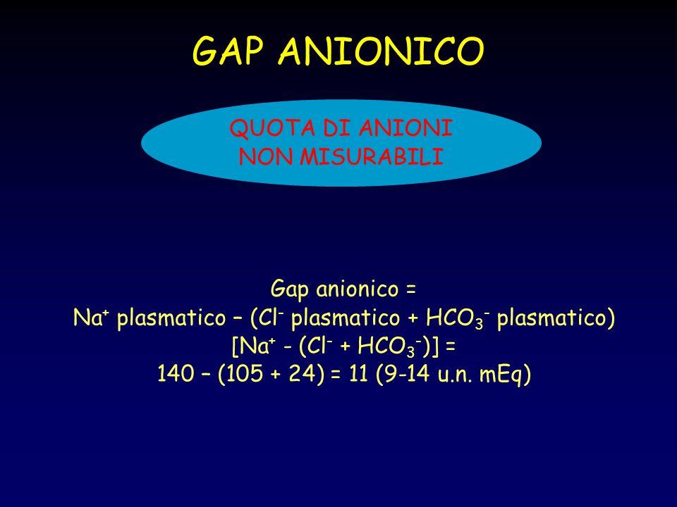 GAP ANIONICO QUOTA DI ANIONI NON MISURABILI Gap anionico =